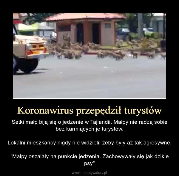 """Koronawirus przepędził turystów – Setki małp biją się o jedzenie w Tajlandii. Małpy nie radzą sobie bez karmiących je turystów.Lokalni mieszkańcy nigdy nie widzieli, żeby były aż tak agresywne.""""Małpy oszalały na punkcie jedzenia. Zachowywały się jak dzikie psy"""""""