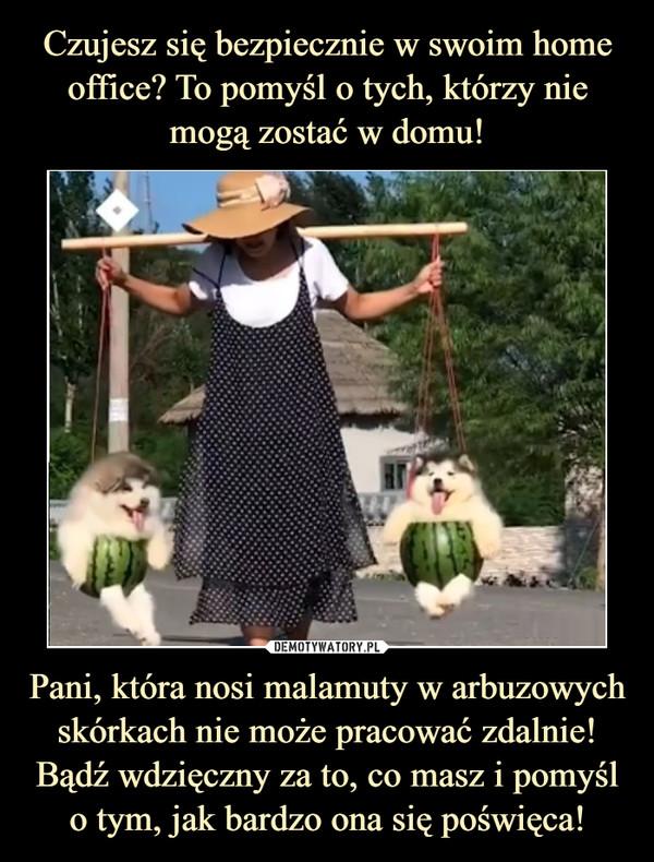 Pani, która nosi malamuty w arbuzowych skórkach nie może pracować zdalnie! Bądź wdzięczny za to, co masz i pomyśl o tym, jak bardzo ona się poświęca! –