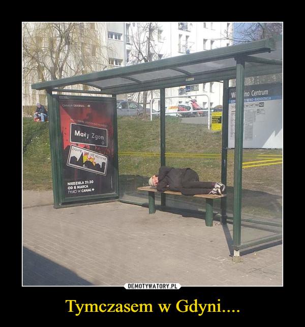 Tymczasem w Gdyni.... –