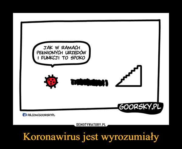 Koronawirus jest wyrozumiały –  JAK W RAMACH PEŁNIONYCH URZĘDÓW I FUNKCJI TO SPOKO