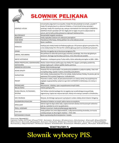 Słownik wyborcy PIS.