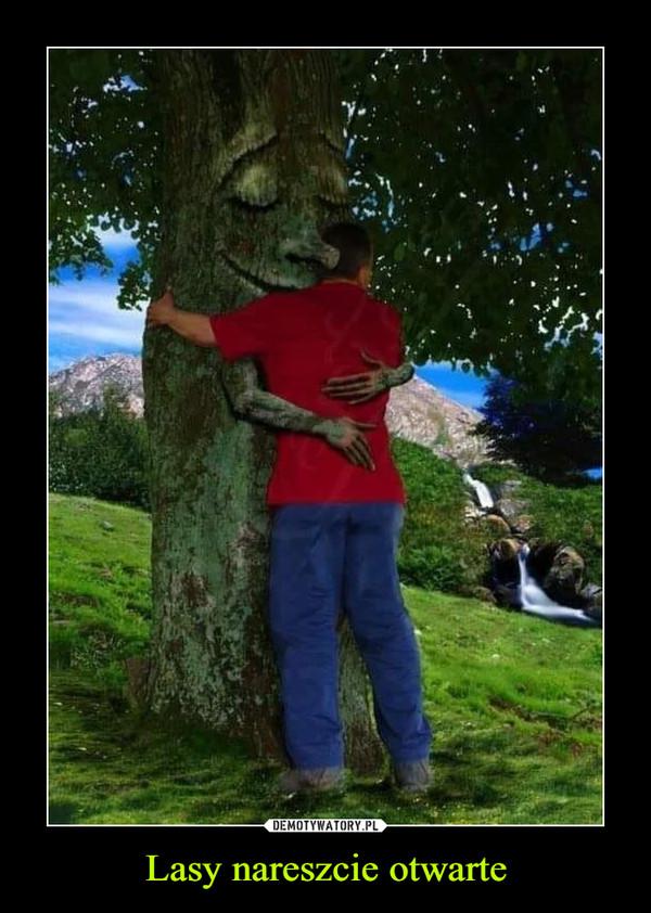Lasy nareszcie otwarte –