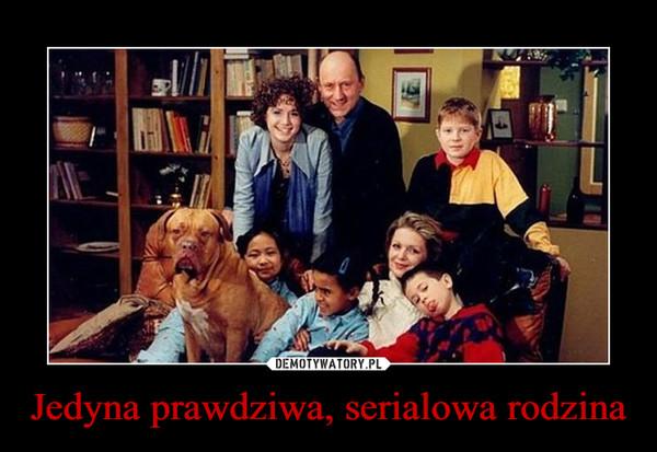 Jedyna prawdziwa, serialowa rodzina –