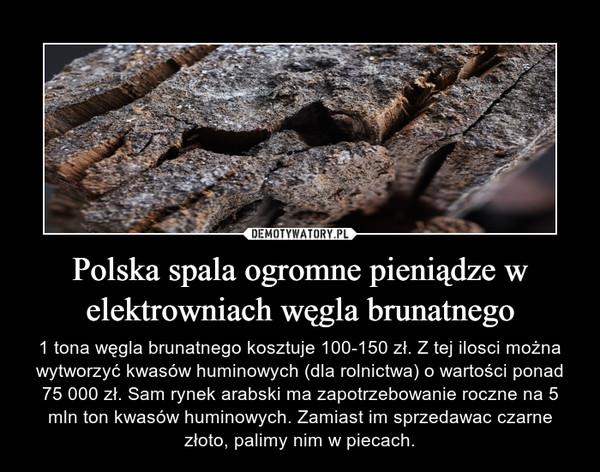 Polska spala ogromne pieniądze w elektrowniach węgla brunatnego – 1 tona węgla brunatnego kosztuje 100-150 zł. Z tej ilosci można wytworzyć kwasów huminowych (dla rolnictwa) o wartości ponad 75 000 zł. Sam rynek arabski ma zapotrzebowanie roczne na 5 mln ton kwasów huminowych. Zamiast im sprzedawac czarne złoto, palimy nim w piecach.