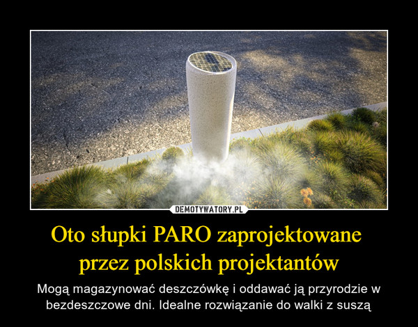Oto słupki PARO zaprojektowane przez polskich projektantów – Mogą magazynować deszczówkę i oddawać ją przyrodzie w bezdeszczowe dni. Idealne rozwiązanie do walki z suszą