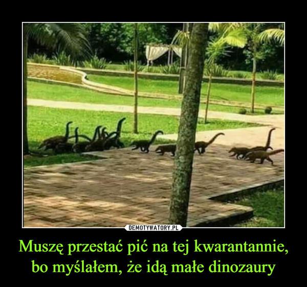 Muszę przestać pić na tej kwarantannie, bo myślałem, że idą małe dinozaury –