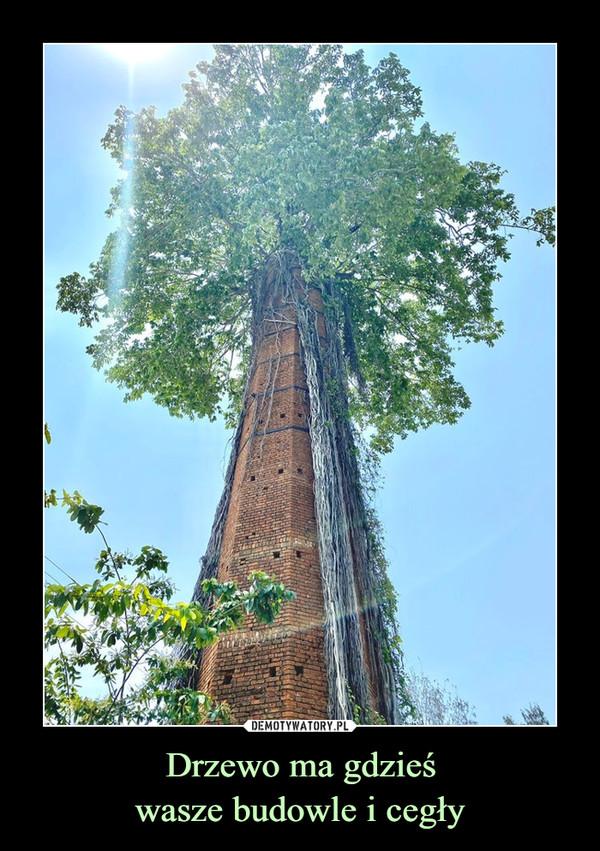 Drzewo ma gdzieśwasze budowle i cegły –