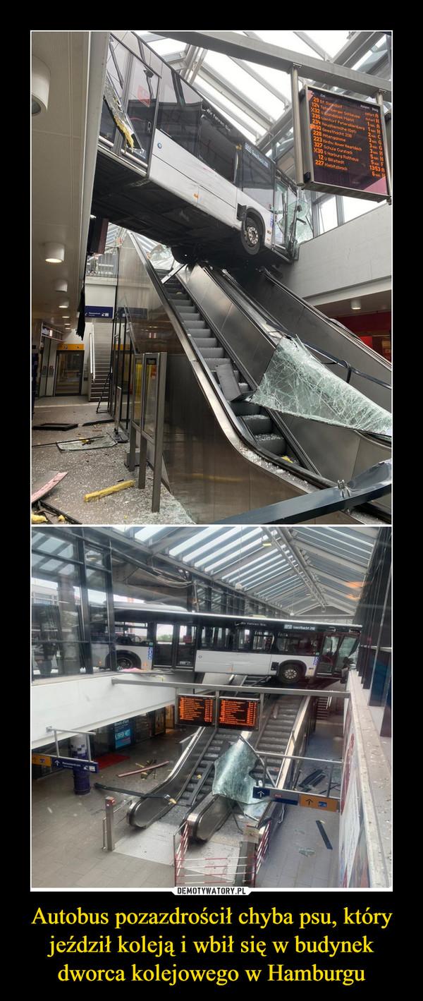 Autobus pozazdrościł chyba psu, który jeździł koleją i wbił się w budynek dworca kolejowego w Hamburgu –