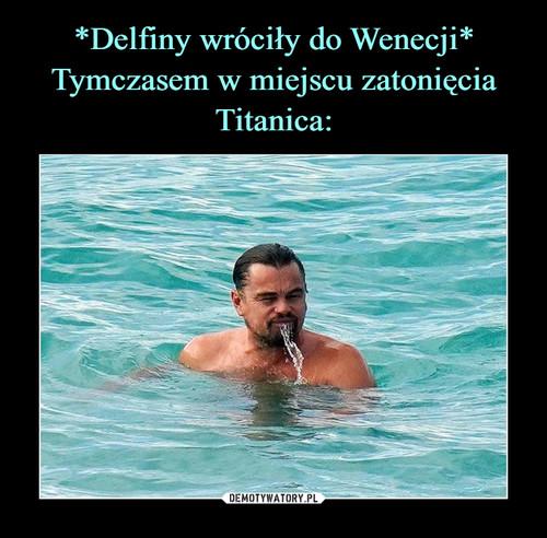 *Delfiny wróciły do Wenecji* Tymczasem w miejscu zatonięcia Titanica: