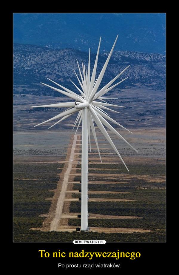 To nic nadzywczajnego – Po prostu rząd wiatraków.