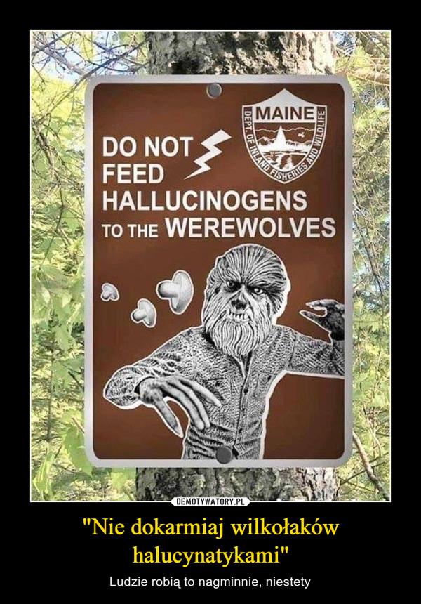 """""""Nie dokarmiaj wilkołaków halucynatykami"""" – Ludzie robią to nagminnie, niestety"""