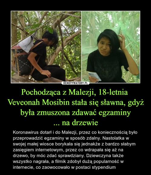 Pochodząca z Malezji, 18-letnia  Veveonah Mosibin stała się sławna, gdyż była zmuszona zdawać egzaminy ... na drzewie