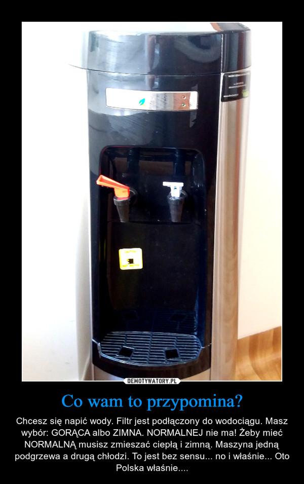 Co wam to przypomina? – Chcesz się napić wody. Filtr jest podłączony do wodociągu. Masz wybór: GORĄCA albo ZIMNA. NORMALNEJ nie ma! Żeby mieć NORMALNĄ musisz zmieszać ciepłą i zimną. Maszyna jedną podgrzewa a drugą chłodzi. To jest bez sensu... no i właśnie... Oto Polska właśnie....