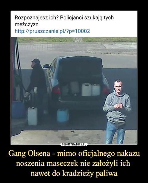 Gang Olsena - mimo oficjalnego nakazu noszenia maseczek nie założyli ich  nawet do kradzieży paliwa
