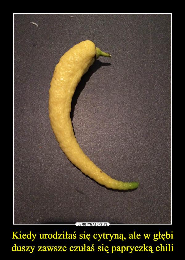 Kiedy urodziłaś się cytryną, ale w głębi duszy zawsze czułaś się papryczką chili –
