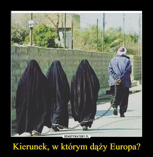 Kierunek, w którym dąży Europa?