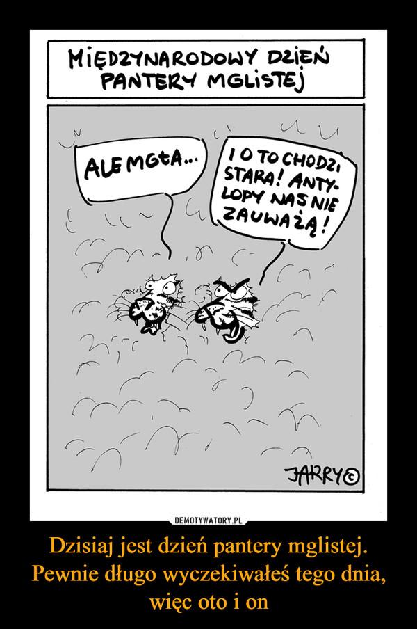 Dzisiaj jest dzień pantery mglistej. Pewnie długo wyczekiwałeś tego dnia, więc oto i on –  Międzynarodowy dzień pantery mglistej Ale mgła I o to chodzi stara! Antylopy nas nie zauważą
