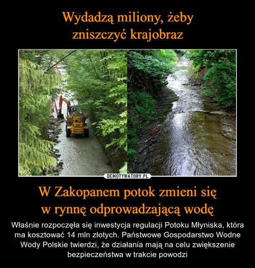 Wydadzą miliony, żeby zniszczyć krajobraz W Zakopanem potok zmieni się w rynnę odprowadzającą wodę