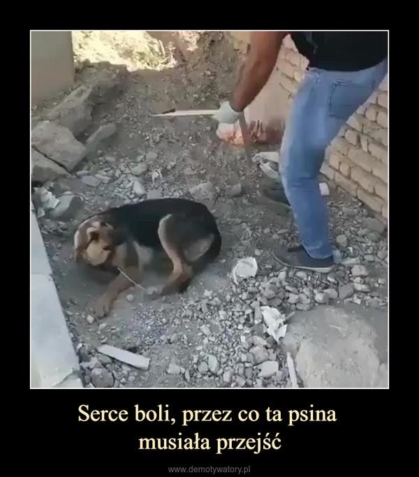 Serce boli, przez co ta psina musiała przejść –