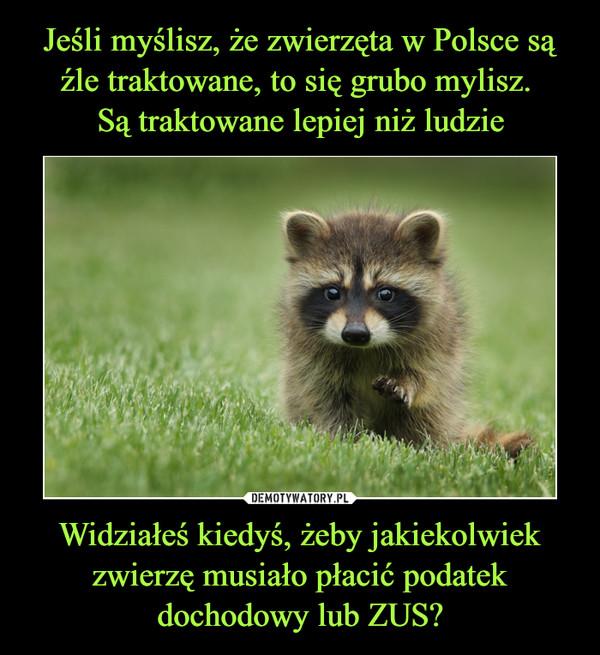 Widziałeś kiedyś, żeby jakiekolwiek zwierzę musiało płacić podatek dochodowy lub ZUS? –