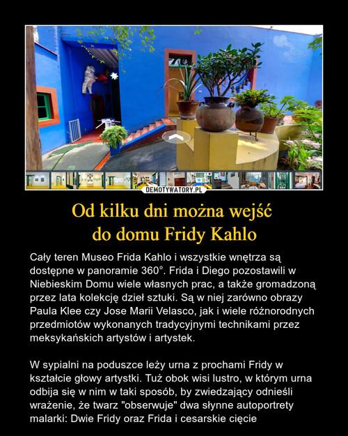 Od kilku dni można wejść  do domu Fridy Kahlo