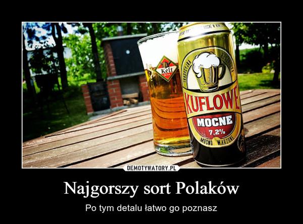 Najgorszy sort Polaków – Po tym detalu łatwo go poznasz