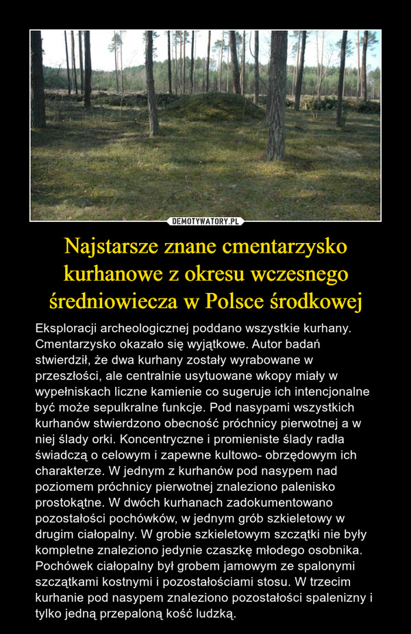 Najstarsze znane cmentarzysko kurhanowe z okresu wczesnego średniowiecza w Polsce środkowej – Eksploracji archeologicznej poddano wszystkie kurhany. Cmentarzysko okazało się wyjątkowe. Autor badań stwierdził, że dwa kurhany zostały wyrabowane w przeszłości, ale centralnie usytuowane wkopy miały w wypełniskach liczne kamienie co sugeruje ich intencjonalne być może sepulkralne funkcje. Pod nasypami wszystkich kurhanów stwierdzono obecność próchnicy pierwotnej a w niej ślady orki. Koncentryczne i promieniste ślady radła świadczą o celowym i zapewne kultowo- obrzędowym ich charakterze. W jednym z kurhanów pod nasypem nad poziomem próchnicy pierwotnej znaleziono palenisko prostokątne. W dwóch kurhanach zadokumentowano pozostałości pochówków, w jednym grób szkieletowy w drugim ciałopalny. W grobie szkieletowym szczątki nie były kompletne znaleziono jedynie czaszkę młodego osobnika. Pochówek ciałopalny był grobem jamowym ze spalonymi szczątkami kostnymi i pozostałościami stosu. W trzecim kurhanie pod nasypem znaleziono pozostałości spalenizny i tylko jedną przepaloną kość ludzką.