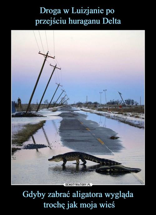 Droga w Luizjanie po  przejściu huraganu Delta Gdyby zabrać aligatora wygląda  trochę jak moja wieś