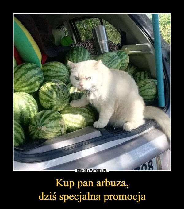 Kup pan arbuza,dziś specjalna promocja –