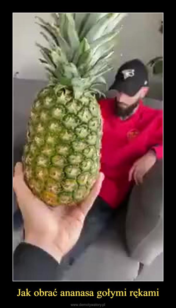 Jak obrać ananasa gołymi rękami –