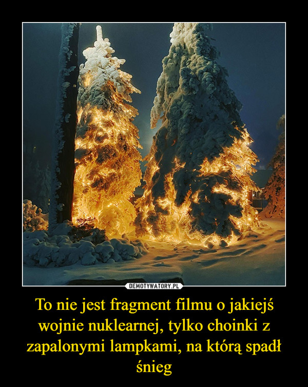 [Obrazek: 1603461222_goweif_600.jpg]