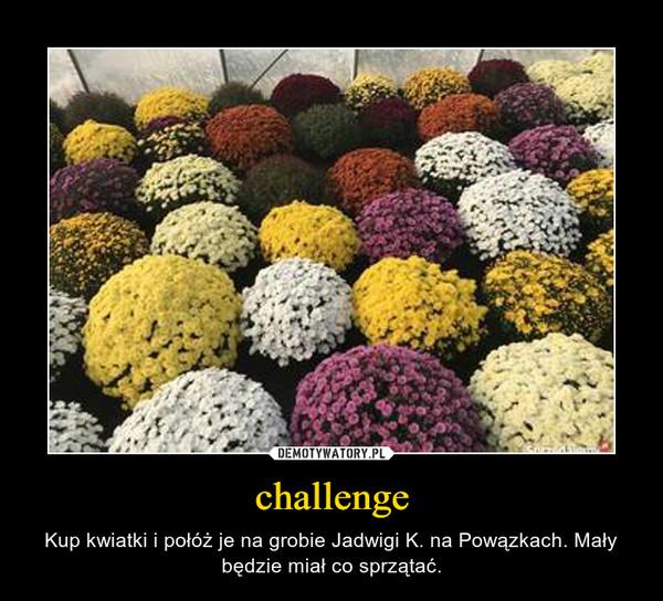 challenge – Kup kwiatki i połóż je na grobie Jadwigi K. na Powązkach. Mały będzie miał co sprzątać.