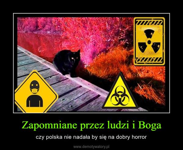 Zapomniane przez ludzi i Boga – czy polska nie nadała by się na dobry horror