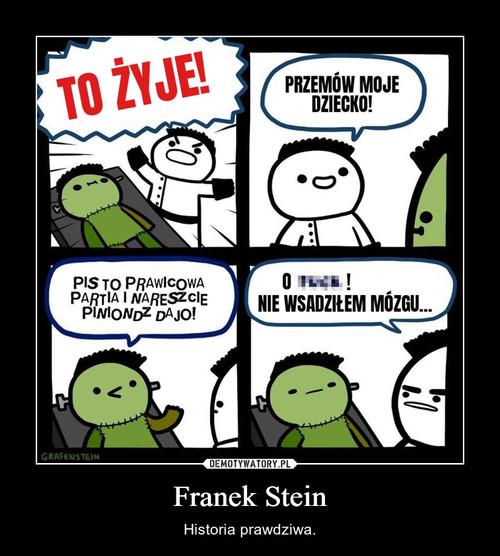 Franek Stein