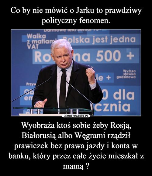 Co by nie mówić o Jarku to prawdziwy polityczny fenomen. Wyobraża ktoś sobie żeby Rosją, Białorusią albo Węgrami rządził prawiczek bez prawa jazdy i konta w banku, który przez całe życie mieszkał z mamą ?