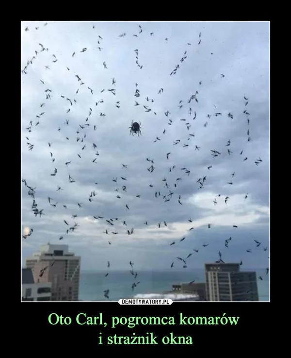 Oto Carl, pogromca komarów i strażnik okna –