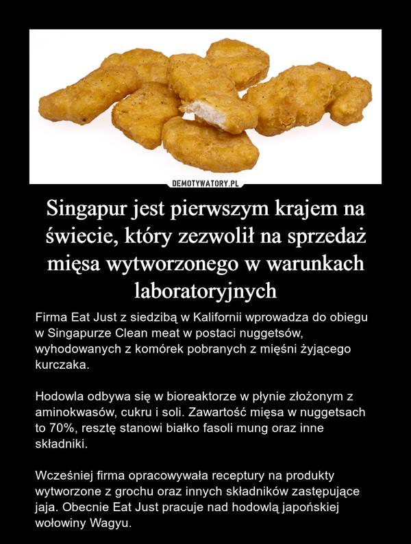 Singapur jest pierwszym krajem na świecie, który zezwolił na sprzedaż mięsa wytworzonego w warunkach laboratoryjnych – Firma Eat Just z siedzibą w Kalifornii wprowadza do obiegu w Singapurze Clean meat w postaci nuggetsów, wyhodowanych z komórek pobranych z mięśni żyjącego kurczaka.Hodowla odbywa się w bioreaktorze w płynie złożonym z aminokwasów, cukru i soli. Zawartość mięsa w nuggetsach to 70%, resztę stanowi białko fasoli mung oraz inne składniki.Wcześniej firma opracowywała receptury na produkty wytworzone z grochu oraz innych składników zastępujące jaja. Obecnie Eat Just pracuje nad hodowlą japońskiej wołowiny Wagyu.