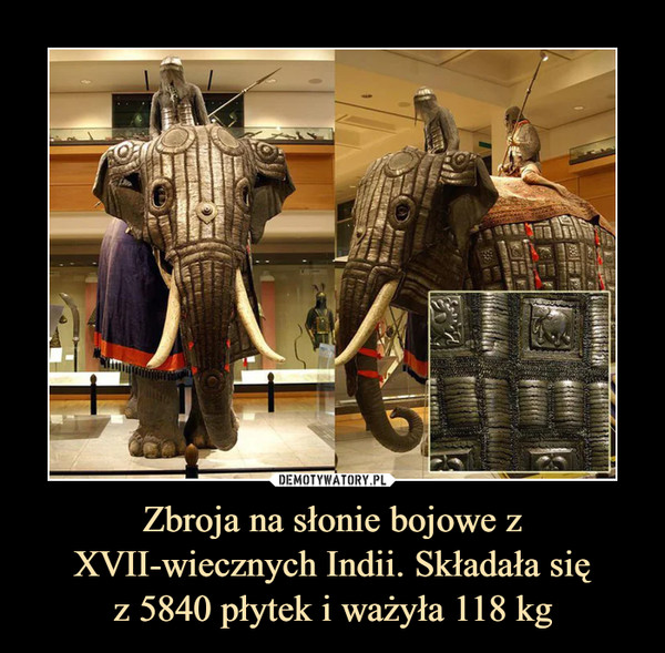 Zbroja na słonie bojowe z XVII-wiecznych Indii. Składała sięz 5840 płytek i ważyła 118 kg –