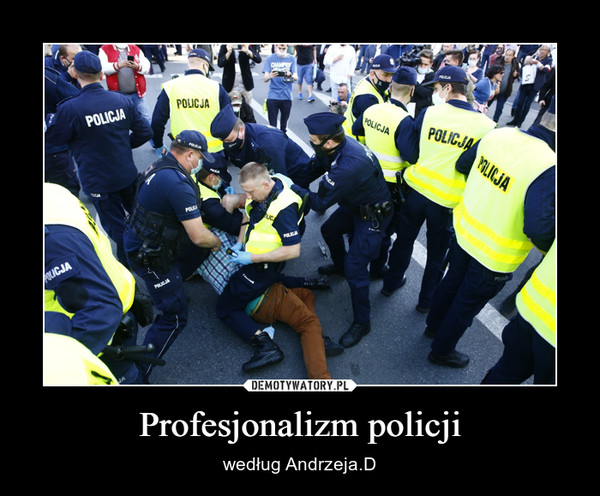 Profesjonalizm policji – według Andrzeja.D