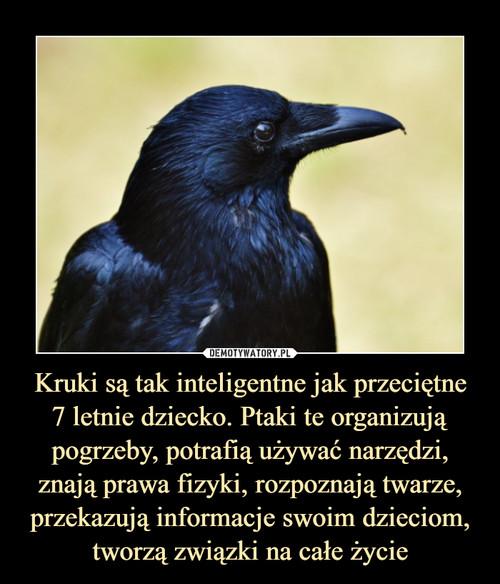 Kruki są tak inteligentne jak przeciętne 7 letnie dziecko. Ptaki te organizują pogrzeby, potrafią używać narzędzi, znają prawa fizyki, rozpoznają twarze, przekazują informacje swoim dzieciom, tworzą związki na całe życie