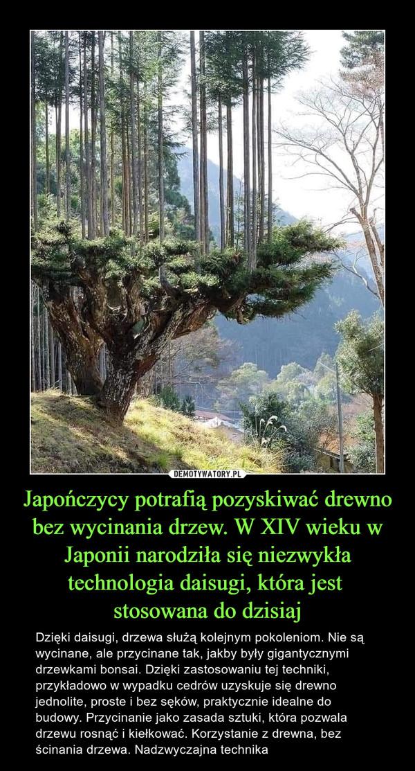 Japończycy potrafią pozyskiwać drewno bez wycinania drzew. W XIV wieku w Japonii narodziła się niezwykła technologia daisugi, która jest stosowana do dzisiaj – Dzięki daisugi, drzewa służą kolejnym pokoleniom. Nie są wycinane, ale przycinane tak, jakby były gigantycznymi drzewkami bonsai. Dzięki zastosowaniu tej techniki, przykładowo w wypadku cedrów uzyskuje się drewno jednolite, proste i bez sęków, praktycznie idealne do budowy. Przycinanie jako zasada sztuki, która pozwala drzewu rosnąć i kiełkować. Korzystanie z drewna, bez ścinania drzewa. Nadzwyczajna technika