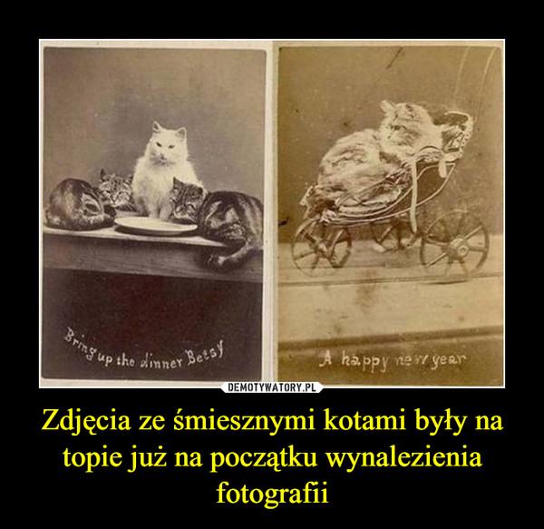 Zdjęcia ze śmiesznymi kotami były na topie już na początku wynalezienia fotografii –