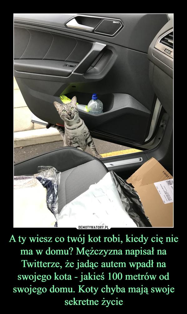 A ty wiesz co twój kot robi, kiedy cię nie ma w domu? Mężczyzna napisał na Twitterze, że jadąc autem wpadł na swojego kota - jakieś 100 metrów od swojego domu. Koty chyba mają swoje sekretne życie –
