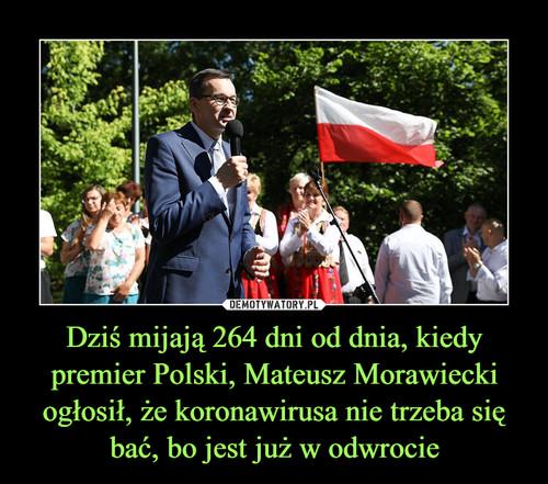 Dziś mijają 264 dni od dnia, kiedy premier Polski, Mateusz Morawiecki ogłosił, że koronawirusa nie trzeba się bać, bo jest już w odwrocie