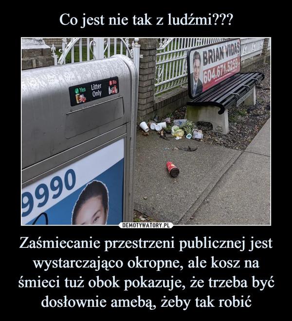 Zaśmiecanie przestrzeni publicznej jest wystarczająco okropne, ale kosz na śmieci tuż obok pokazuje, że trzeba być dosłownie amebą, żeby tak robić –
