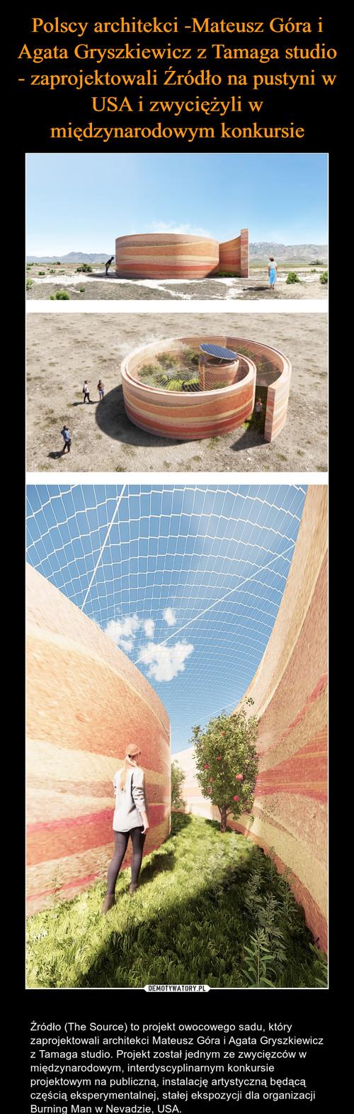 Polscy architekci -Mateusz Góra i Agata Gryszkiewicz z Tamaga studio - zaprojektowali Źródło na pustyni w USA i zwyciężyli w międzynarodowym konkursie