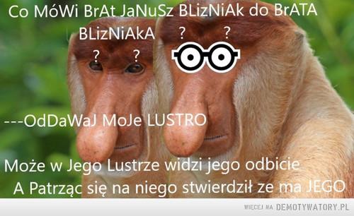 Januszedwa