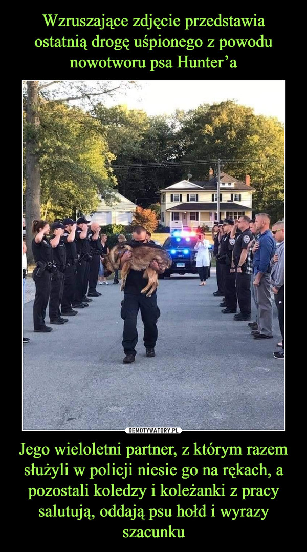 Jego wieloletni partner, z którym razem służyli w policji niesie go na rękach, a pozostali koledzy i koleżanki z pracy salutują, oddają psu hołd i wyrazy szacunku –