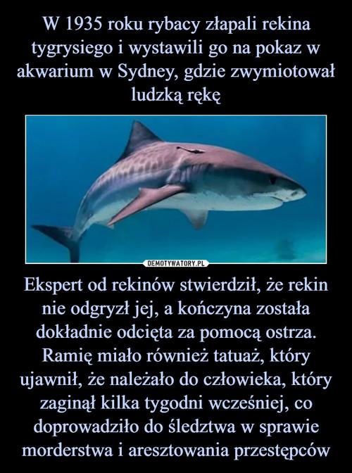 W 1935 roku rybacy złapali rekina tygrysiego i wystawili go na pokaz w akwarium w Sydney, gdzie zwymiotował ludzką rękę Ekspert od rekinów stwierdził, że rekin nie odgryzł jej, a kończyna została dokładnie odcięta za pomocą ostrza. Ramię miało również tatuaż, który ujawnił, że należało do człowieka, który zaginął kilka tygodni wcześniej, co doprowadziło do śledztwa w sprawie morderstwa i aresztowania przestępców