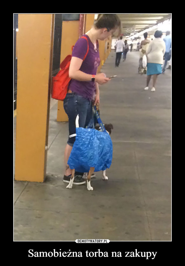 Samobieżna torba na zakupy –